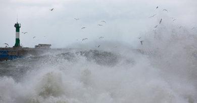 Ветер остановил работу Керченской переправы