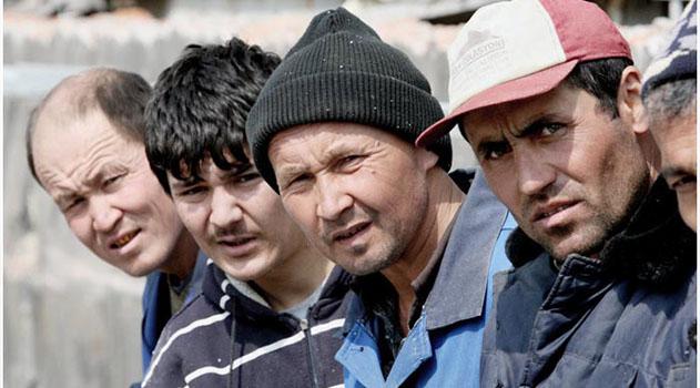 22 нелегала из Средней Азии пытались проехать в Крым, спрятавшись под сумками