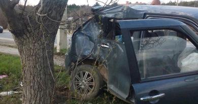 Под Симферополем легковушка разбилась о дерево и столб - водителю стало плохо в дороге