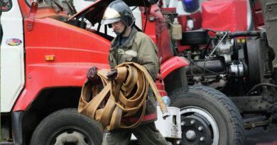 В Крыму на пожаре огнеборцы спасли женщину и кота