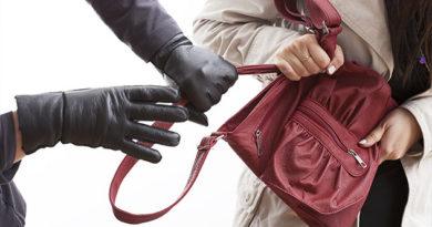 Севастопольские полицейские пресекли деятельность серийных любителей дамских сумочек