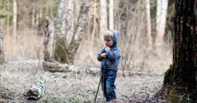 Всю ночь в крымских лесах искали трехлетнего малыша: ребенок госпитализирован