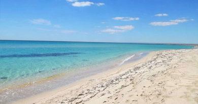 Акцент на пляжах может помешать Крыму стать круглогодичным курортом - советник министра