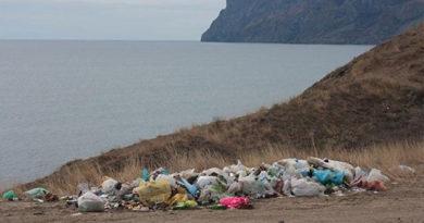 Чиновников и работников крымских МУПов оштрафовали на 50 тысяч за плохую уборку мусора