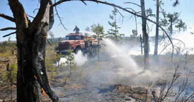 До 15 ноября в Крыму объявили пожароопасный период