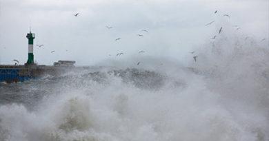 Непогода мешает искать экипаж сухогруза в Черном море - МЧС