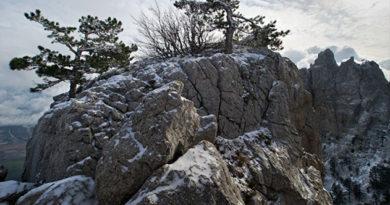 В Крыму на три дня объявили штормовое предупреждение из-за заморозков
