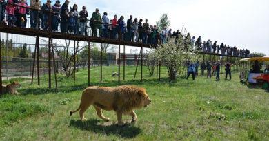 Зубков: На открытие «Тайгана» приехало 5 тысяч гостей