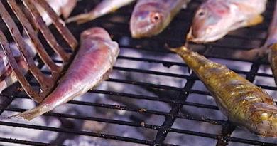 Феодосийские власти ищут новую площадку для фестиваля рыбной кухни «Барабулька»