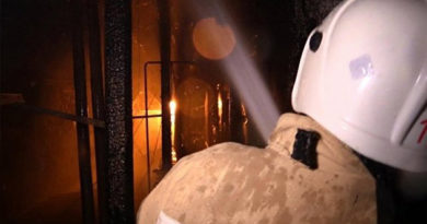 Крымские спасатели за день потушили пожар в машине, доме и горевший камыш