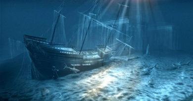 """В """"Херсонесе Таврическом"""" займутся поиском мест кораблекрушений"""