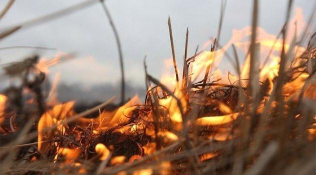 В Крыму объявили штормовое предупреждение на 6-9 мая в связи с высокой пожароопасностью