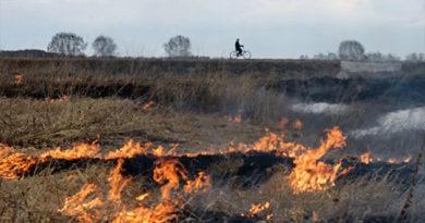 В Крыму объявлено штормовое предупреждение в связи с пожароопасностью