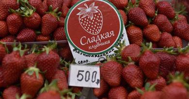 pochemu-v-krymu-dorogaya-klubnika-i-mozhno-li-ee-est