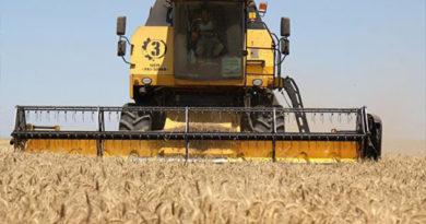 Крым в этом году получил дополнительно 1 млрд руб на поддержку агросектора - Аксенов
