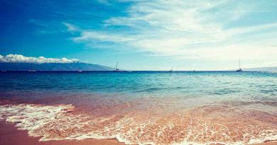 Море у берегов Крыма прогрелось до 20-23 градусов