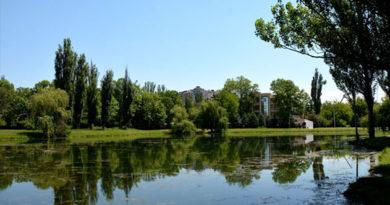 Озеро в симферопольском парке Гагарина почистят специально изготовленным устройством