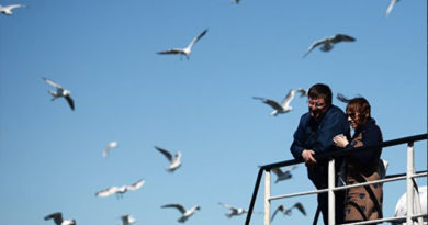 Керченская паромная переправа приостановила работу из-за ветра