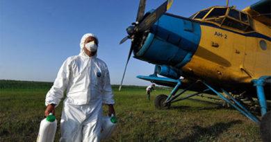 Крымские поля спасают от саранчи с помощью самолета из Краснодара