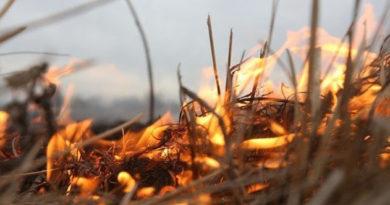 В крымском селе в сарае сгорело 7 тонн сена