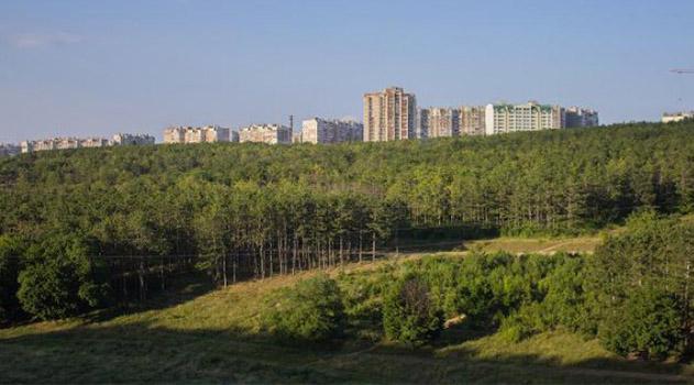 territoriya-gorodskih-lesov-simferopolya-sokratilas-vdvoe