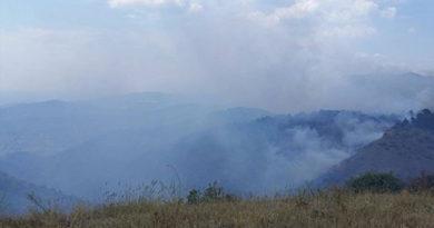 За сутки в Крыму произошло рекордное количество возгораний