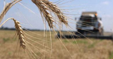 krymskie-agrarii-v-etom-godu-smogut-sekonomit-1-1-mlrd-rub-pri-pokupke-otechestvennoj-selhoztehniki