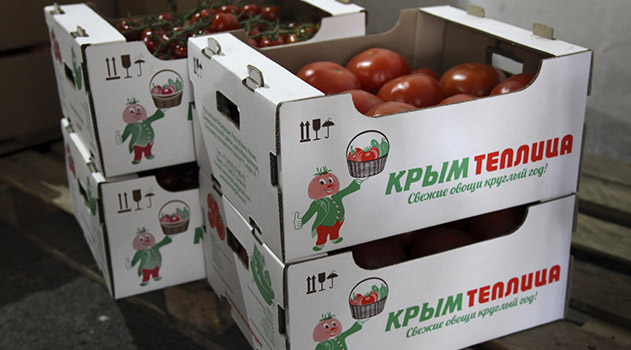 prokuratura-ponudila-ooo-krymteplitsa-urozhajnoe-vyplatit-sotrudnikam-1-mln-rub-dolga-po-zarplate