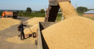 rossijskie-agrarii-smogut-zarabotat-na-eksporte-zerna-do-8-mlrd-dollarov