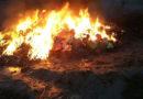 Прокуратура запретила симферопольской фирме сжигать медицинские отходы возле жилых домов