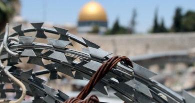 za-sutki-v-stychkah-s-izrailskoj-politsiej-pogibli-dva-palestintsa-bolee-1-tys-postradali