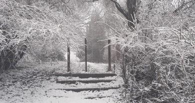 na-vyhodnyh-krym-nakrylo-snegom