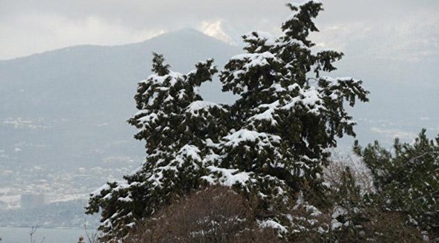 nepogoda-na-poroge-v-pyatnitsu-v-krymu-silnyj-veter-sneg-i-do-5