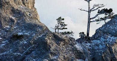 v-krymskih-gorah-turist-slomal-nogu