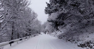 vse-na-lyzhi-aj-petri-zamelo-snegom