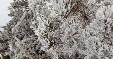 zima-naposledok-vo-vtornik-na-krym-obrushatsya-silnye-snegopady-i-veter