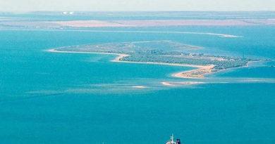 v-kerchenskom-proliv-obnaruzhen-mollyusk-iz-tihogo-okeana