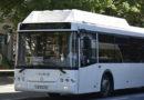 Кадровый голод: в Крыму не хватает водителей автобусов