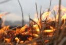 Табу на костры и салюты: в Крыму сохраняется риск пожаров