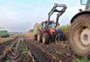 Начинающие фермеры в Крыму получат гранты на общую сумму в 175,5 млн рублей