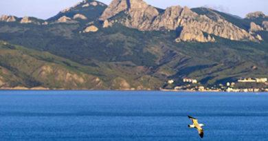 na-poluostrov-v-barhatnyj-sezon-turisty-vybirayut-krym-dlya-otdyha-osenyu