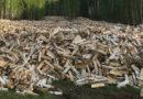 В Крыму установили цены на дрова для населения: что почем и есть ли льготы