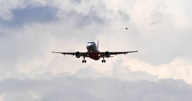 letaem-vygodno-eksperty-rasskazali-kak-sekonomit-pri-pokupke-aviabiletov