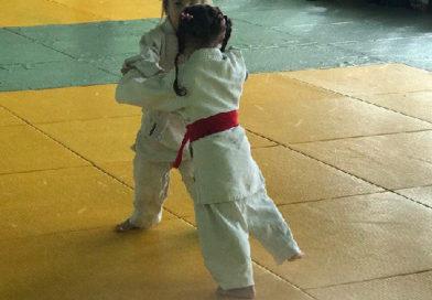 Более сотни спортсменок приняли участие в турнире по дзюдо