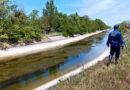 Водолазы нашли тело пропавшей девочки на дне Северо-Крымского канала
