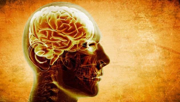 nazvany-pyat-glavnyh-produktov-dlya-uluchsheniya-raboty-mozga